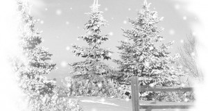 neige02